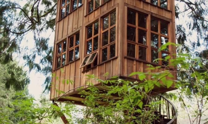 Tree House Design Ideas Modern