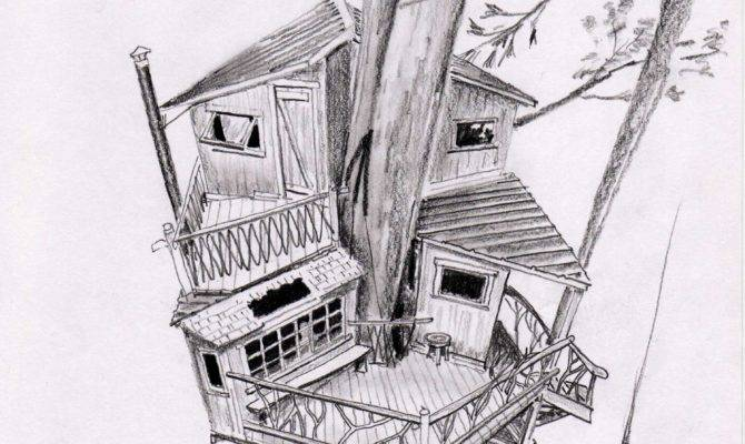 Tree House Dovetails