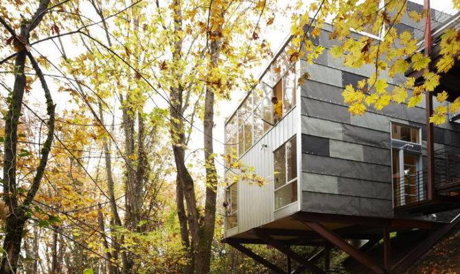 Treehouse Shed Architecture Style Interior Design Inspirations