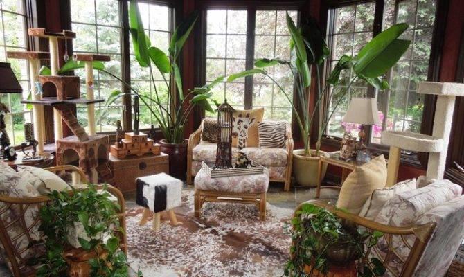 Tropical Sunrooms Sunroom