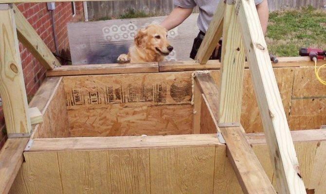 Two Room Dog House Plans Fresh Meet Winners