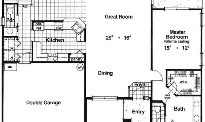 Two Story Home Plan Big Space