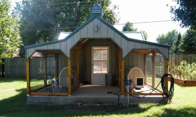 Unique Dog Houses Newlibrarygood