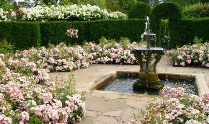 Victorian Garden Design Ludwigs Rosesludwigs Roses