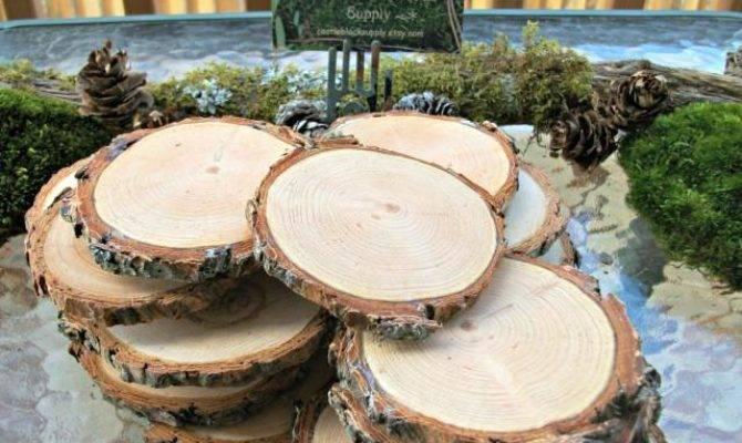 Wood Slices Set Wedding Tree